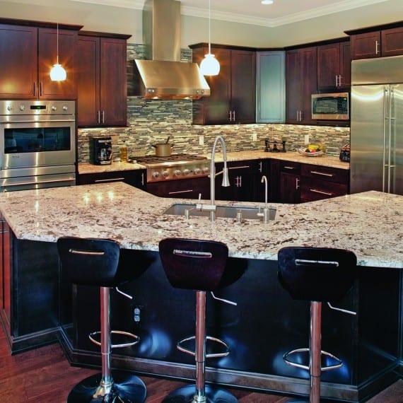 Palma Vista Craftsman_kitchen